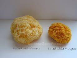 Herb: White Fungus